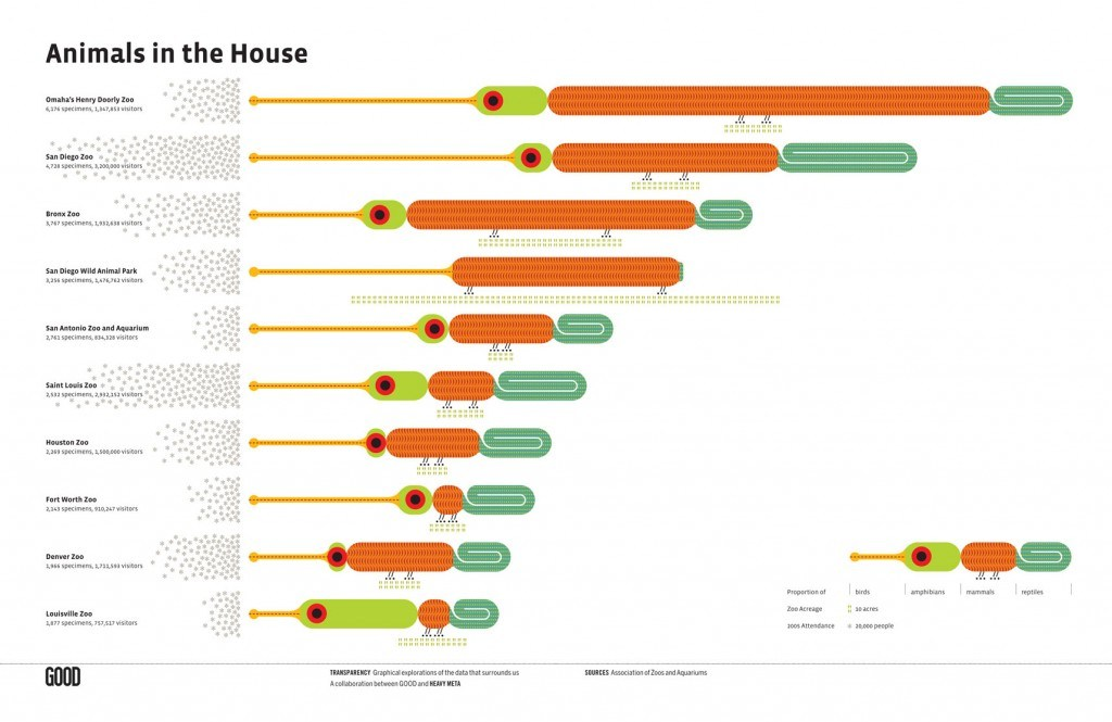 Animals in the House 1024x665