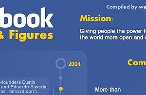 Facebook Stats 2010 Small 300x195