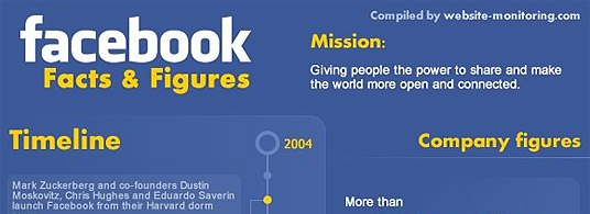 Facebook Stats 2010 Small