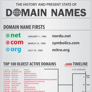 domain names infographic1 300x300