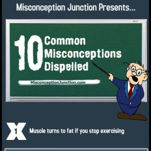 10 Common Misconceptions Dispelled Infographic1 300x300