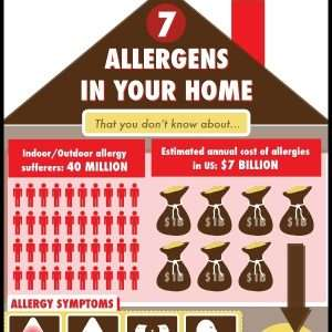 7 Allergens in your home that you didnt know about Infographic1 300x300
