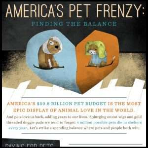 Americas Pet Frenzy Infographic1 300x300