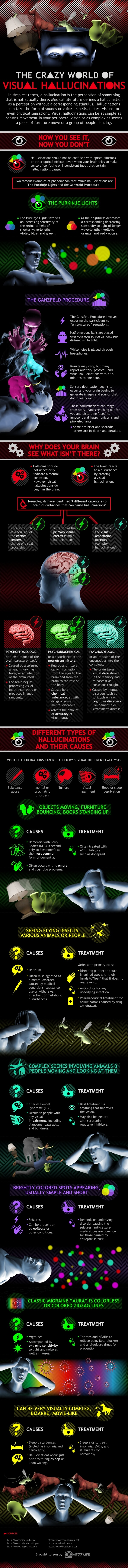 THE CRAZY WORLD OF VISUAL HALLUCINATIONS Infographic