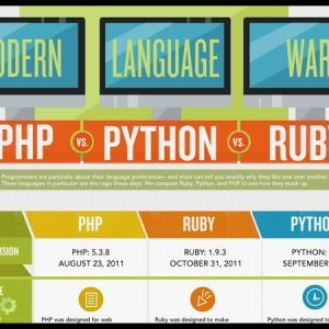 programming languanges php python rubby infographic1 300x300