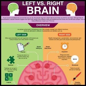 Are You Left or Right Brain Infographic1 300x300