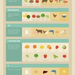 Vitamins Cheat Sheet Infographic 150x150 1