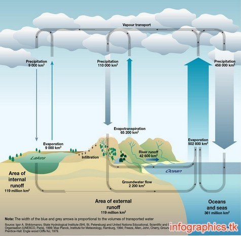 water cycle 003