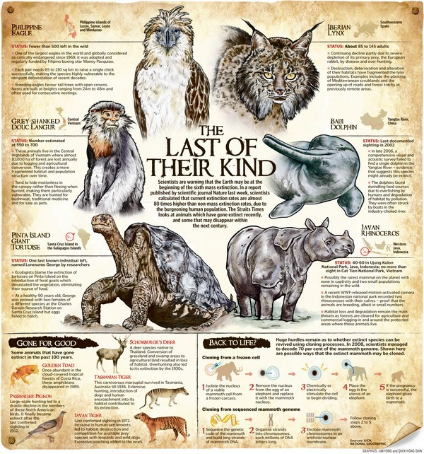 last of their kind infographic
