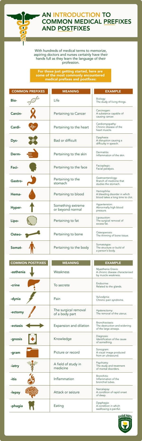 medical terminology infographic1