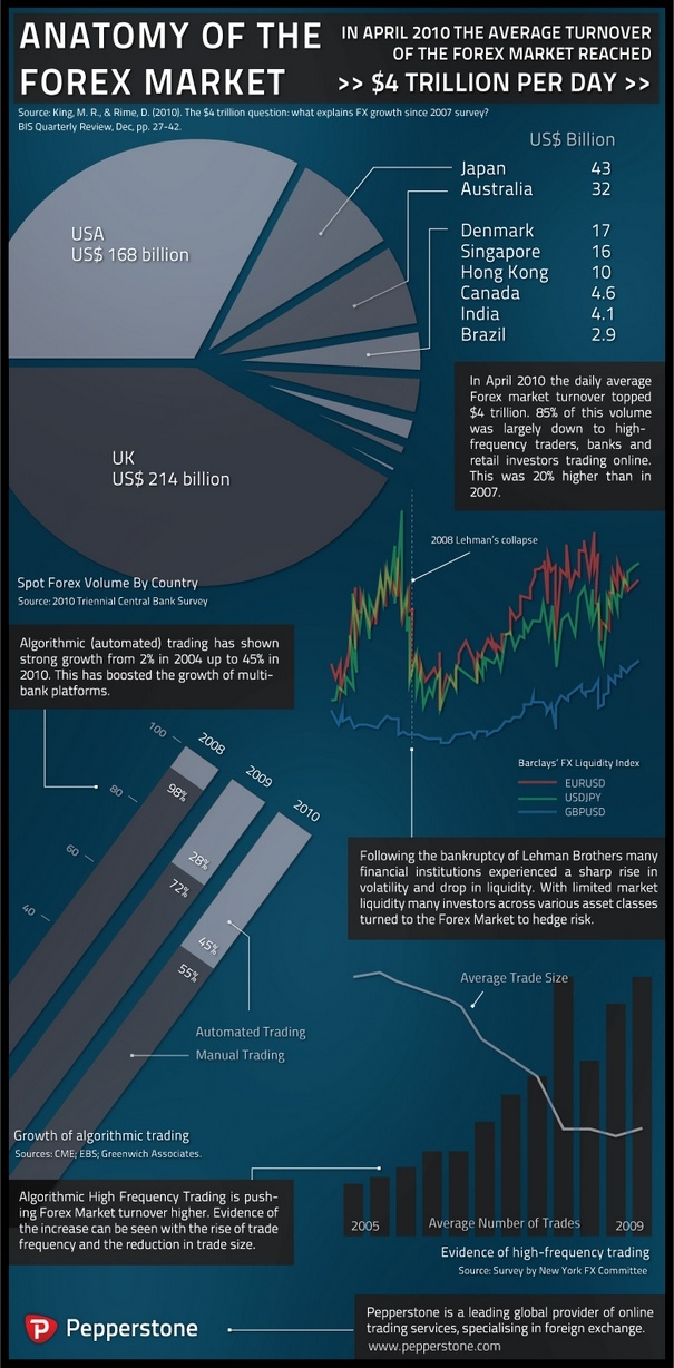 Anatomy of the Forex Market Infographic