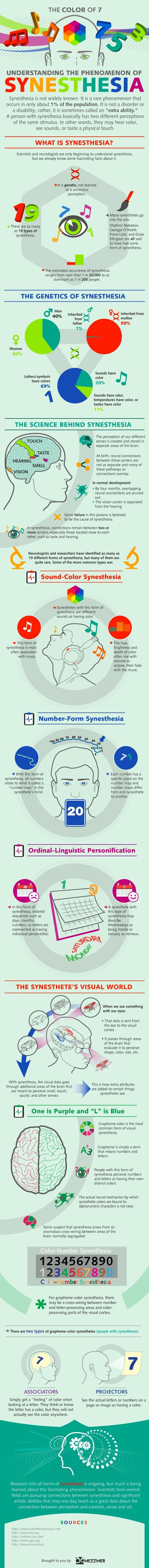 UNDERSTANDING THE PHENOMENON OF SYNESTHESIA Infographic