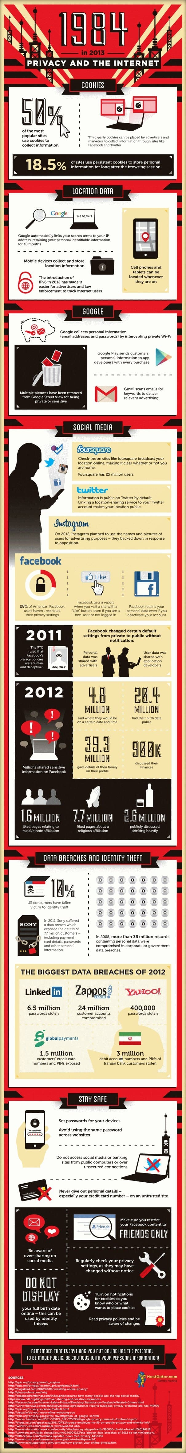 1984 in 2013 Privacy and The Internet Infographic