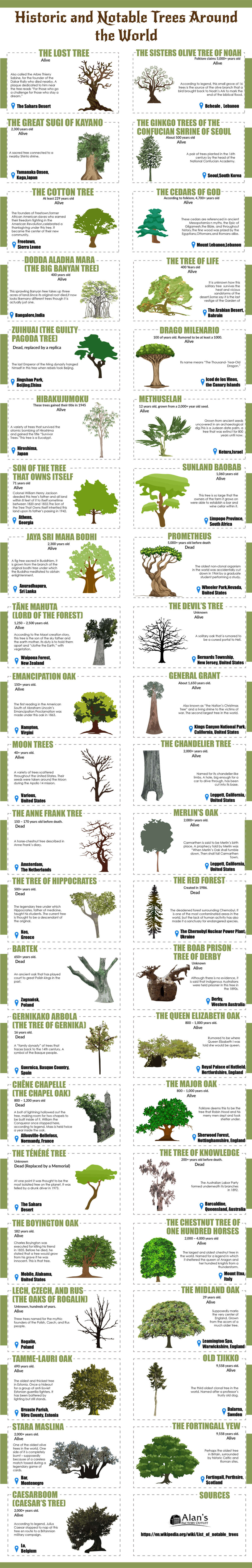 Historic and Notable Trees Around the World