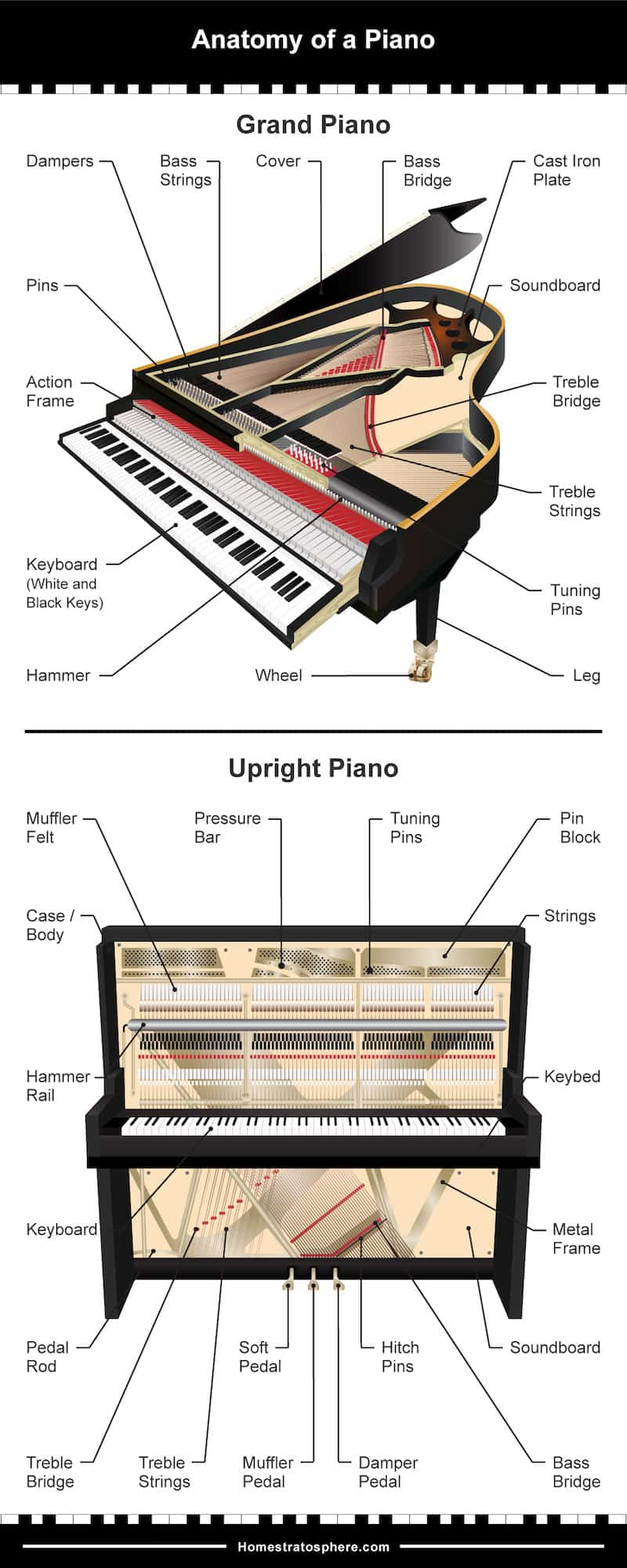 Anatomy of a Piano Infographic